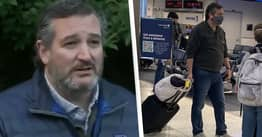 Ted Cruz Returns From Cancun, Says Family Trip Was A Mistake