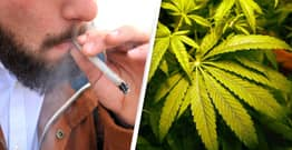 New York Expunges Criminal Records Of People Previously Convicted Of Marijuana Possession