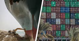 Animals Trapped On Ships In Suez Canal Jam Could Starve If Situation Lasts Much Longer, Charity Warns