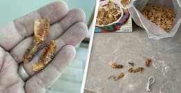 Man Calls Poison Control After Finding Shrimp Tails And 'Rat Droppings' In Cereal