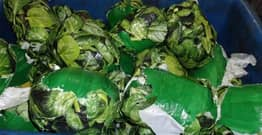 Border Protection Officers Seize More Than $1.3 Million Worth Of Meth Wrapped In Pictures Of Spinach