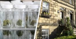 First Medical Cannabis Clinic Approved In Scotland