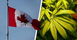 Canada Cannabis Sales Doubled To $2.6 Billion In 2020