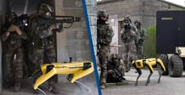 French Army Deploys Boston Dynamics' Robot Dog For Two Days Without Them Knowing