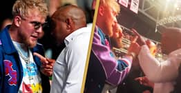 Jake Paul And Daniel Cormier Get Into Heated Confrontation After He Calls Him 'Fat Ass'