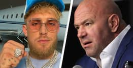 Jake Paul Accuses 'Douche' UFC President Dana White Of 'Underpaying' Fighters