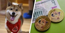 Dogecoin Has A New Rival Cryptocurrency, Shiba Inu, And It's Booming