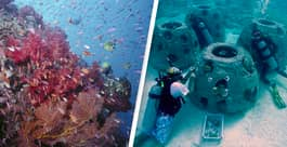 Coral Reefs Made With Human Remains Are Restoring Florida's Coastline