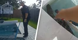 Shocking Footage Shows Police Capturing Baby Alligator In Family's Hot Tub