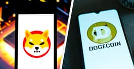 Dogecoin And Shiba Inu Both Skyrocket In Crypto Battle Of The Dogs