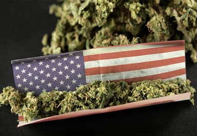 Washington Have Earned A FORTUNE Since Legalising Weed