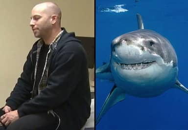 A Terrifying Shark Attack Actually Saved This Man's Life