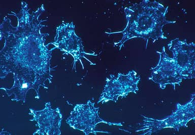 Scientists Unveil Revolutionary Drug That Could Wipe Out Cancer
