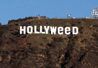 Here's Who Was Really Behind The 'Hollyweed' Prank