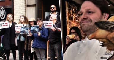 Top Chef Waves Dead Ducks In Faces Of Vegan Protesters