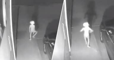 Mysterious 'Dobby' Creature Turns Out To Be 'Kid With Underwear On Head'