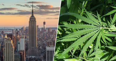 New York Lawmakers Vote To Decriminalise Possession Of Weed