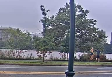 Female Jogger Chases Down 'Terrified' Flasher And Pins Him To The Ground