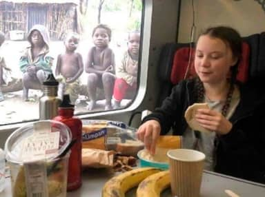 Photo Of Greta Thunberg Eating Lunch In Front Of Kids In Poverty Is Fake