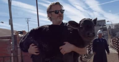 Joaquin Phoenix Saves Mama Cow And Her Baby After Oscars