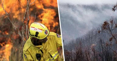 No Active Bushfires In New South Wales For First Time In 240 Days