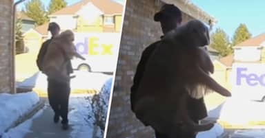 FedEx Driver Delivers Family's Lost Dog Home After She Escapes