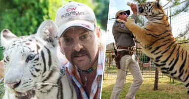 Joe Exotic Is Terrified Of Tigers, According To Tiger King Special