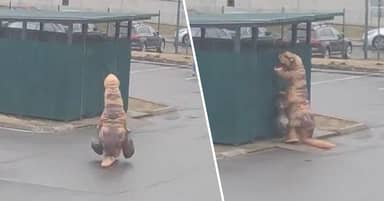 Guy Dressed As T-Rex Spotted Taking Out The Trash During Quarantine