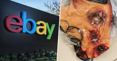 Six eBay Staffers Allegedly Sent Porn, Bloody Pig Mask And Cockroaches To Couple Who Criticised Them