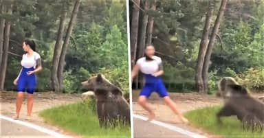 Terrifying Moment Bear Lunges At Tourist Who Got Out Of Car For Selfie