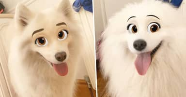 New Snapchat Filter Lets You Turn Your Dog Into A Disney Character