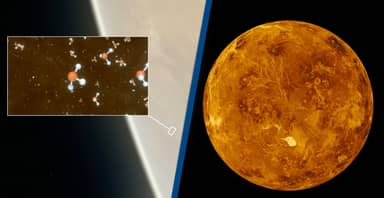 Signs Of Alien Life Detected On Venus