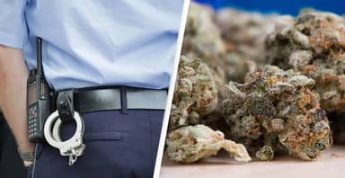 Cops Allegedly Confiscate 160kg Of Cannabis, Report Only 1kg And Sell Rest