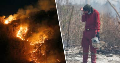Amazon 'Condemned To Destruction' As Fires Rage Across Brazil