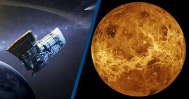 NASA Considering Mission To Venus After Recent Possible Discovery Of Life