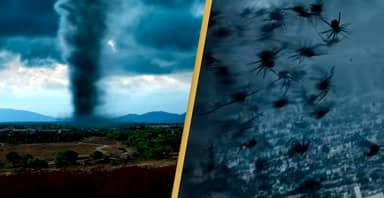Arachnado, A Film About A Tornado Full Of Spiders, Gets First Trailer