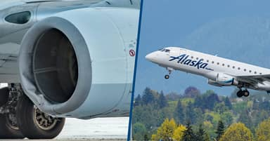 Boeing 737-700 Plane Hits Bear On Runway During Landing At Alaska Airport