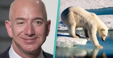 Jeff Bezos Announces First Of $10 Billion Donation To Fight Climate Change
