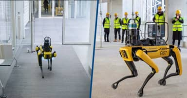Boston Dynamics' Robot Dog Involved In Construction Of Battersea Roof Gardens