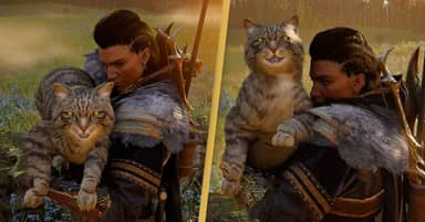 Assassin's Creed Valhalla's Raid Cats Are Absolutely Massive