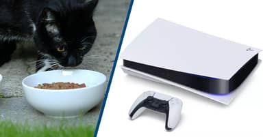 Amazon Apologises For Customers Receiving Cat Food Instead Of PlayStation 5