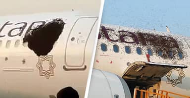 Passenger Planes Grounded After Huge Swarm Of Bees Surround Aircraft