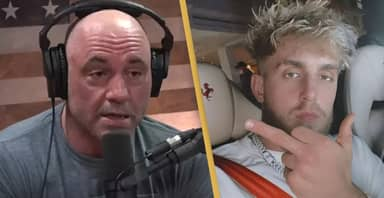 Joe Rogan Warns Jake Paul Against Fighting Dillon Danis, Says He'll 'Get His Arms Broken'