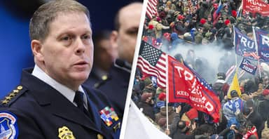 US Capitol Police Chief Says Trump's 'Criminal' Mob Used Chemical Irritants On Officers