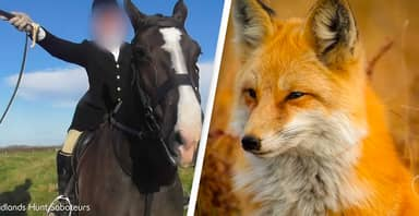 Fox Hunter Tells Protesters They 'Don't Give A F*ck' About Spreading Coronavirus