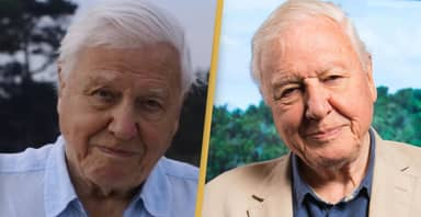 David Attenborough Confirms He Won't Ever Return To Instagram