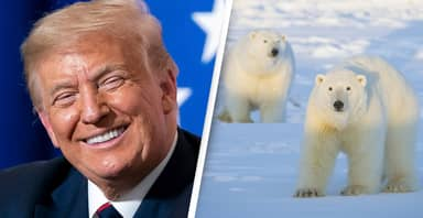 Trump Administration Pushes Ahead With Devastating Oil Lease Sales In Arctic Wildlife Refuge