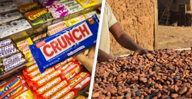Mars, Nestlé And Hershey To Face Landmark Child Slavery Lawsuit