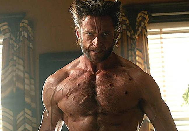 Wolverine in Days of Future Past