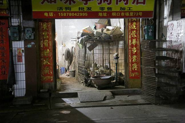 A stand in Yulin selling dogs before the dog mate ban on sales